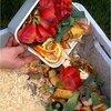 Composteren handleiding wat er al dan niet in de compostton mag,...