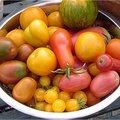 Tomaten eten is gezond en zorgt voor kleiner risico op kanker door lycopeen