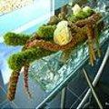 Tafelstuk met Amaranthus maken