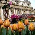 Paasmis Rome met Nederlandse bloemen
