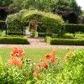 Tuin aanleggen: werkwijze