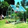 Groenten kweken in de kas / serre in de maand juni