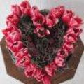 Valentijn met rode tulpen: bloemenhart