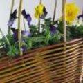 Maak zelf een lentebloemstuk met wilgentenen