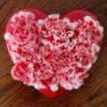 Valentijn van lezers