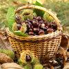 Week van de noot: welke kastanjes zijn eetbaar?