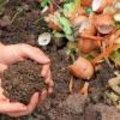 Compost beschermen in de winter, hoezo?