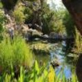 Op zoek naar de mooiste tuinen langs de Côte d'Azur (deel 2)