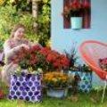 Herfsttrends in de tuin : Oppepper voor najaarstuin