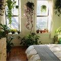 7 planten voor slaapkamer