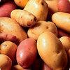 Aardappelenverbruik