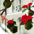 Alternatieven voor de kerstboom: Kerst zonder boom
