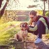 Tekentijd: hoe bescherm je jouw huisdier?