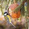 Tips bij het voederen van tuinvogels