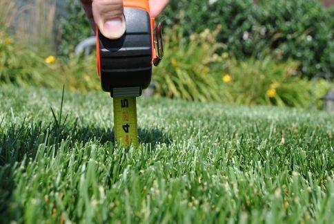 grasmaaien op de juiste hoogte