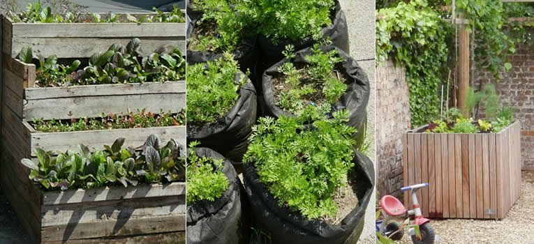 tuinieren op balkon of terras