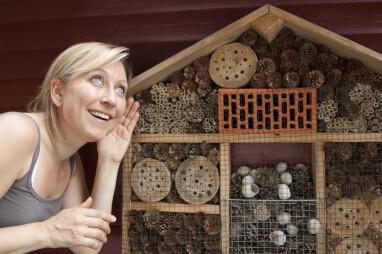Luister en bekijk het insectenhotel van dichtbij.