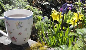 De tuin in april