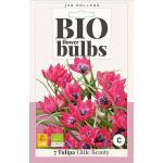 Bio Tulp 'Little Beauty' - bio flowerbulbs