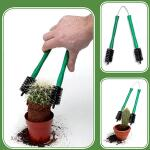 Cactustang