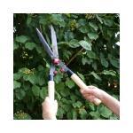 Heggenschaar 53 cm - houten handgrepen