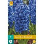 Hyacint Blue Jacket - blauw