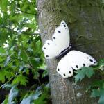 Vlinder wit muurdecoratie