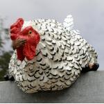 Nieuwsgierige kip