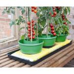 Plant- en gietpot groen (3 stuks)
