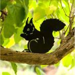Silhouet etende eekhoorn - decoratief