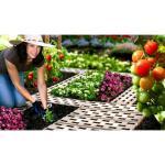 Tuinpadplaten - grondplaten bruin (8 stuks)