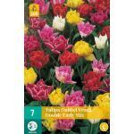 Tulipa Dubbel Vroeg mix - dubbelvroege tulp (7 stuks)