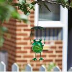 Verende kikker met parasol