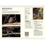 Vogelgids Onze Natuur