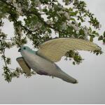 Torenvalk als vogelschrik