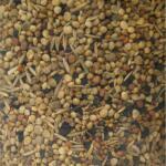 Vogelvoer wilde zaden 500 gram