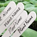 Waterbestendige stift zwart voor plantenlabels