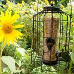 Zaadvoedersilo voor kleine vogels